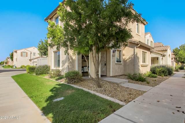 2421 N 83RD Lane, Phoenix, AZ 85037 (MLS #6294235) :: Hurtado Homes Group