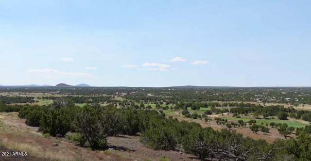 270.54 Acres Sitgreaves Street, White Mountain Lake, AZ 85912 (MLS #6294247) :: CANAM Realty Group