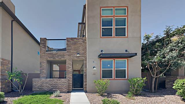 1348 N Zane Drive, Chandler, AZ 85226 (MLS #6294329) :: NextView Home Professionals, Brokered by eXp Realty