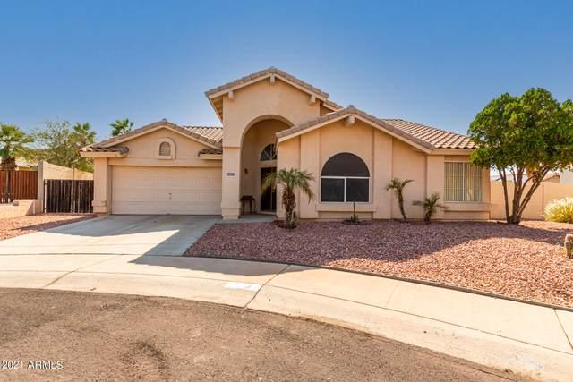 11022 Palomino Lane, Goodyear, AZ 85338 (MLS #6294339) :: Klaus Team Real Estate Solutions