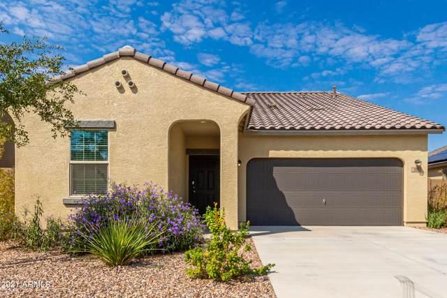 301 S Verdad Lane, Casa Grande, AZ 85194 (MLS #6294359) :: Klaus Team Real Estate Solutions