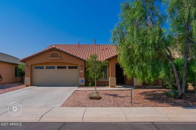 8218 S Jenna Lane, Laveen, AZ 85339 (MLS #6294368) :: Klaus Team Real Estate Solutions