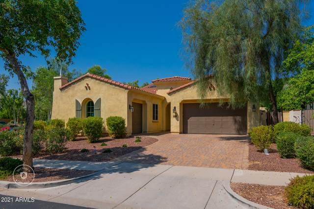 20902 W Eastview Way, Buckeye, AZ 85396 (MLS #6294391) :: Elite Home Advisors
