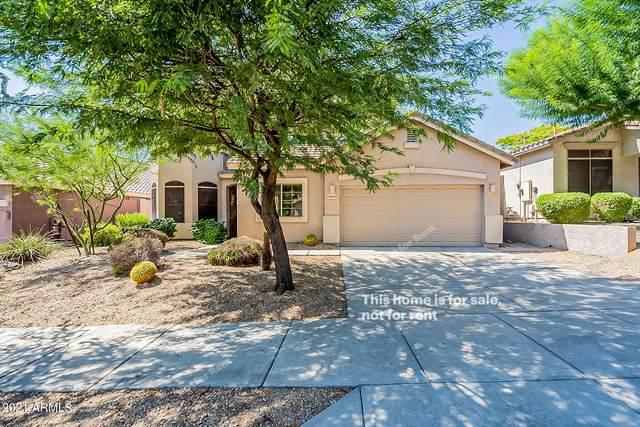 33602 N 25TH Drive, Phoenix, AZ 85085 (MLS #6294392) :: Elite Home Advisors
