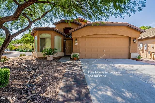 2213 W Madre Del Oro Drive, Phoenix, AZ 85085 (MLS #6294410) :: Elite Home Advisors