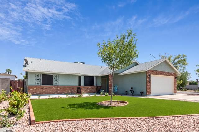 1707 N Platina Circle, Mesa, AZ 85205 (MLS #6294414) :: The Riddle Group