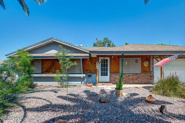 4016 E Gelding Drive, Phoenix, AZ 85032 (MLS #6294433) :: Klaus Team Real Estate Solutions
