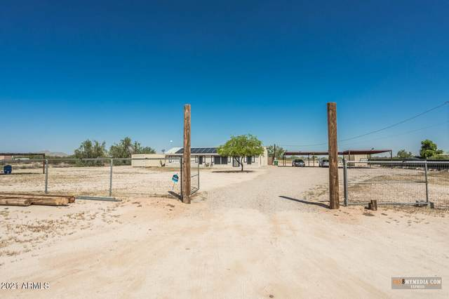 51426 W Sotol Road, Maricopa, AZ 85139 (MLS #6294450) :: Yost Realty Group at RE/MAX Casa Grande