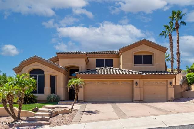 341 E Hiddenview Drive, Phoenix, AZ 85048 (MLS #6294464) :: Power Realty Group Model Home Center