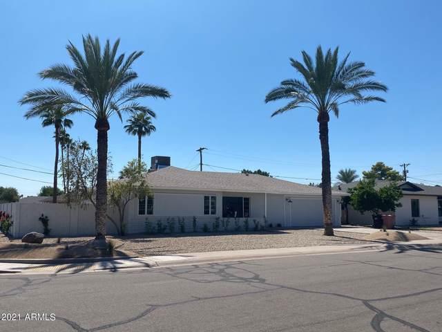 6743 E Holly Street, Scottsdale, AZ 85257 (MLS #6294475) :: The Laughton Team