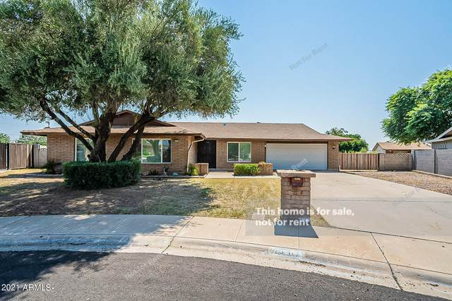 4311 W Las Palmaritas Drive, Glendale, AZ 85302 (MLS #6294487) :: Yost Realty Group at RE/MAX Casa Grande