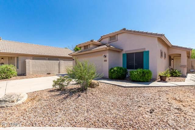 2731 E Dragoon Circle, Mesa, AZ 85204 (MLS #6294507) :: Yost Realty Group at RE/MAX Casa Grande