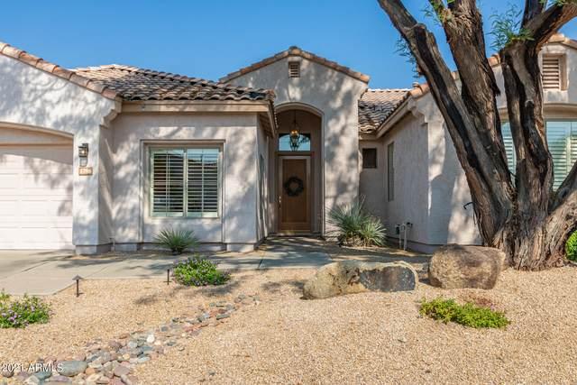 1786 W Hawk Way, Chandler, AZ 85286 (MLS #6294509) :: Keller Williams Realty Phoenix