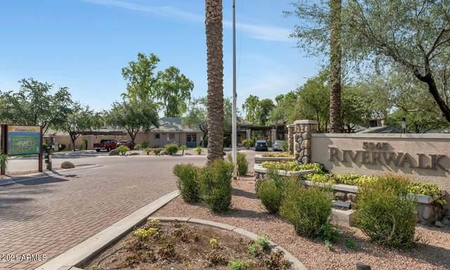 5345 E Van Buren Street #307, Phoenix, AZ 85008 (MLS #6294548) :: West Desert Group | HomeSmart