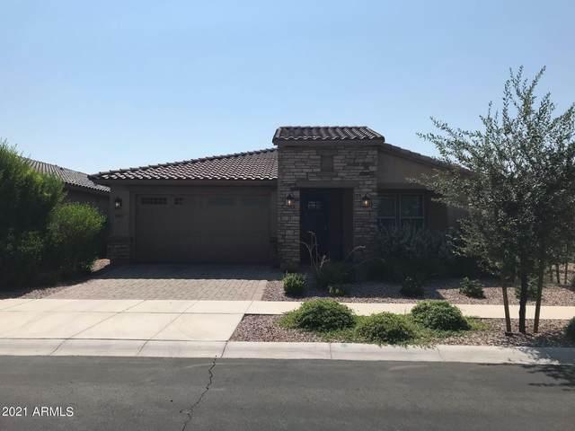10425 E Sebring Avenue, Mesa, AZ 85212 (#6294569) :: AZ Power Team