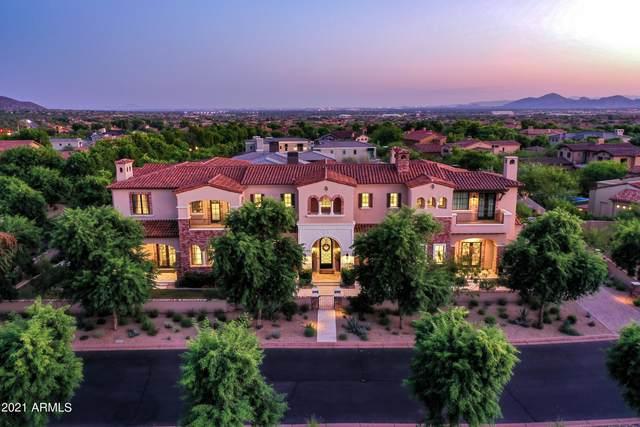 19024 N 99TH Street, Scottsdale, AZ 85255 (MLS #6294615) :: Conway Real Estate