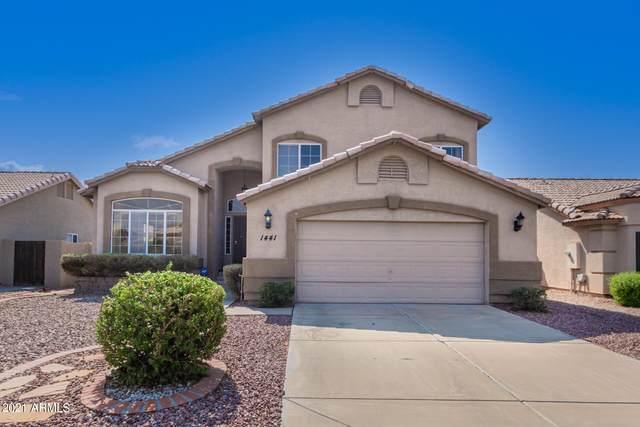 1441 S Vine Street, Gilbert, AZ 85233 (MLS #6294618) :: The Copa Team | The Maricopa Real Estate Company