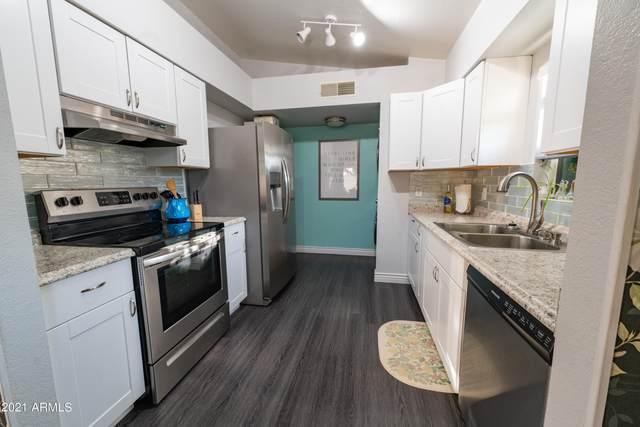 3720 W Villa Maria Drive, Glendale, AZ 85308 (MLS #6294625) :: Yost Realty Group at RE/MAX Casa Grande