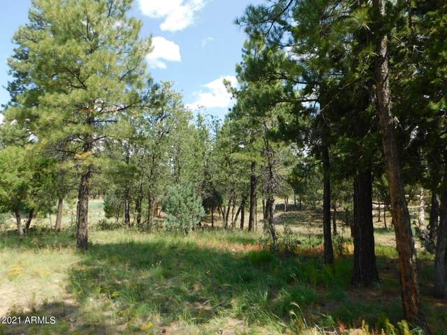 5474 Bald Eagle Way, Happy Jack, AZ 86024 (MLS #6294637) :: The Daniel Montez Real Estate Group