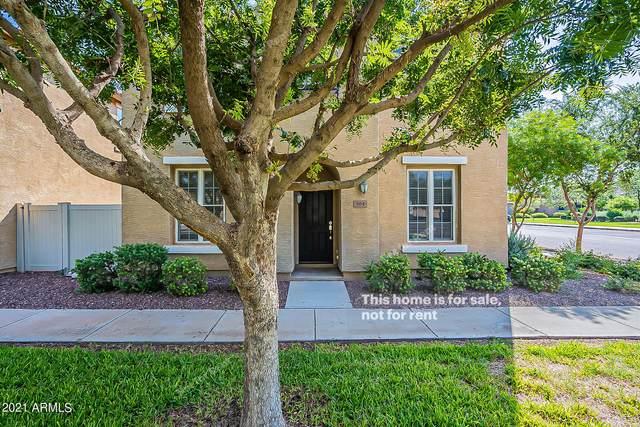 864 S Reber Avenue, Gilbert, AZ 85296 (MLS #6294650) :: Elite Home Advisors
