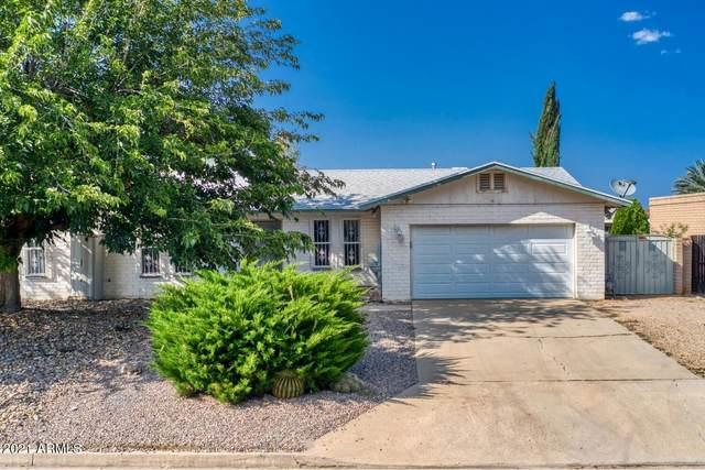 3027 Oak Hill Street, Sierra Vista, AZ 85650 (MLS #6294680) :: Executive Realty Advisors