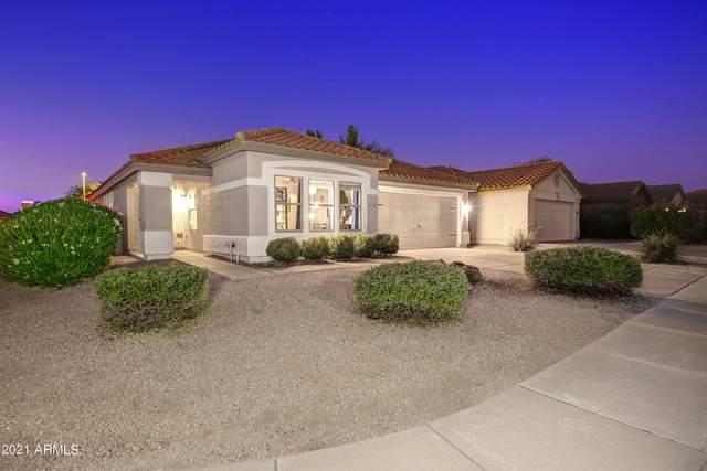4102 E Pinto Lane, Phoenix, AZ 85050 (MLS #6294735) :: Yost Realty Group at RE/MAX Casa Grande