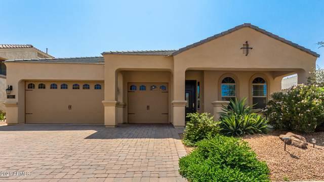 261 E San Carlos Way, Chandler, AZ 85249 (MLS #6294748) :: Elite Home Advisors