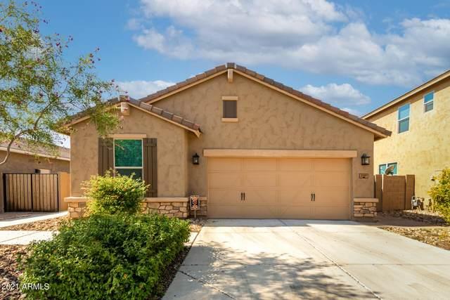 2951 W Thorn Tree Drive, Phoenix, AZ 85085 (MLS #6294762) :: Elite Home Advisors