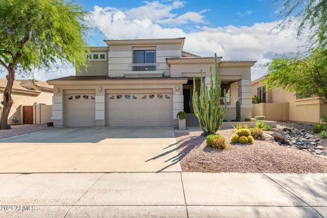 5241 E Hashknife Road, Phoenix, AZ 85054 (MLS #6294781) :: Arizona 1 Real Estate Team