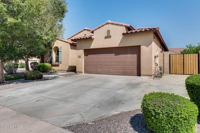 7031 S Legend Drive, Gilbert, AZ 85298 (MLS #6294787) :: Keller Williams Realty Phoenix