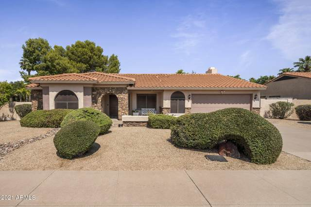 10310 E Becker Lane, Scottsdale, AZ 85260 (MLS #6294796) :: Keller Williams Realty Phoenix