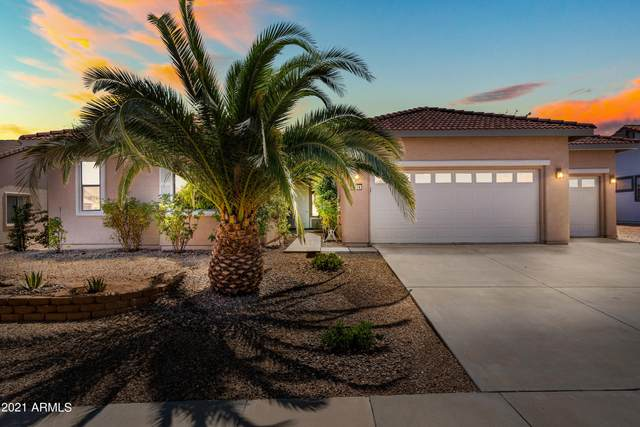 1714 Laguna Nigel Drive, Sierra Vista, AZ 85635 (MLS #6294824) :: Keller Williams Realty Phoenix