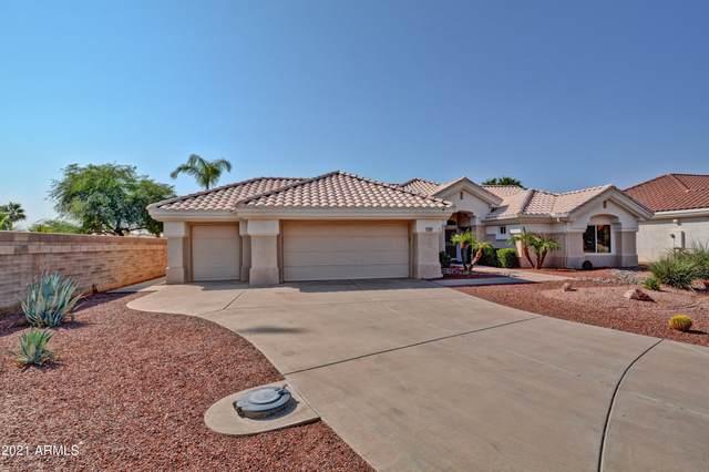 13503 W Robin Lane, Sun City West, AZ 85375 (MLS #6294827) :: Keller Williams Realty Phoenix
