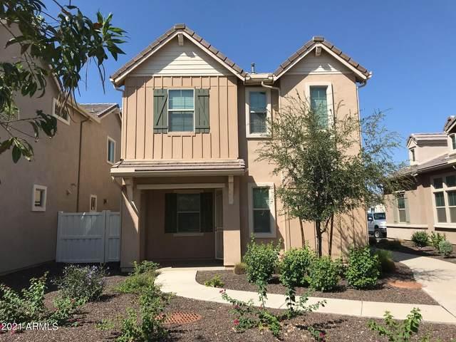 2241 S Agnes Lane, Gilbert, AZ 85295 (MLS #6294851) :: Elite Home Advisors