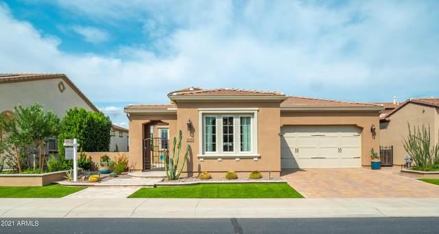 36780 N Crucillo Drive, Queen Creek, AZ 85140 (MLS #6294875) :: Elite Home Advisors
