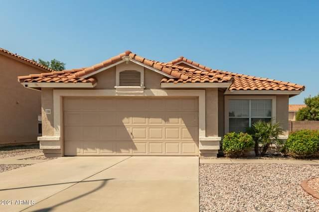 156 S Norfolk Circle, Mesa, AZ 85206 (MLS #6294876) :: The Garcia Group