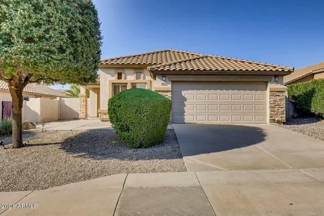 9106 E Hillview Circle, Mesa, AZ 85207 (MLS #6294882) :: Power Realty Group Model Home Center