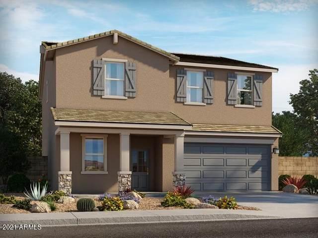 5625 W Rainwater Drive, Laveen, AZ 85339 (MLS #6294885) :: Elite Home Advisors