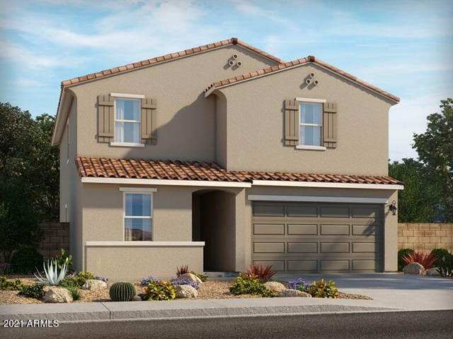 5621 W Rainwater Drive, Laveen, AZ 85339 (MLS #6294892) :: Elite Home Advisors