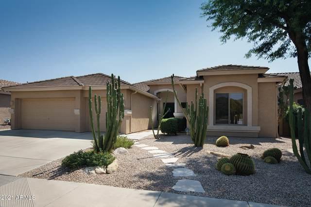 4149 W Hackamore Drive, Phoenix, AZ 85083 (MLS #6294900) :: Maison DeBlanc Real Estate