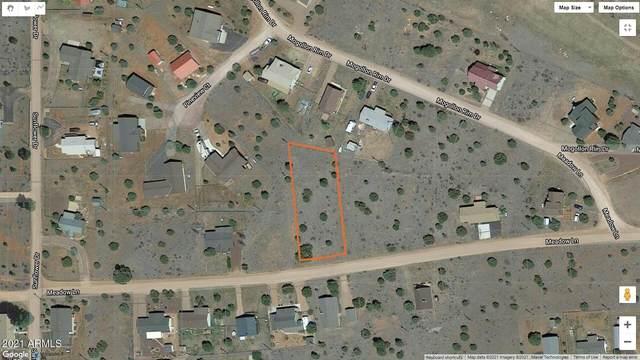 2228 Meadow Lane, Overgaard, AZ 85933 (MLS #6294913) :: Keller Williams Realty Phoenix