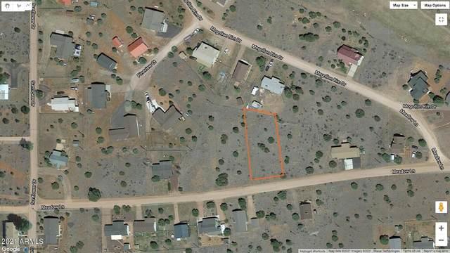 2232 Meadow Lane, Overgaard, AZ 85933 (MLS #6294914) :: Yost Realty Group at RE/MAX Casa Grande