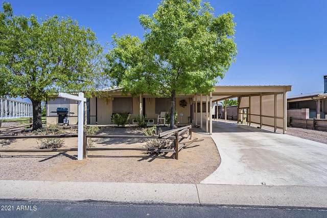 1057 S 97th Way, Mesa, AZ 85208 (MLS #6294929) :: Elite Home Advisors