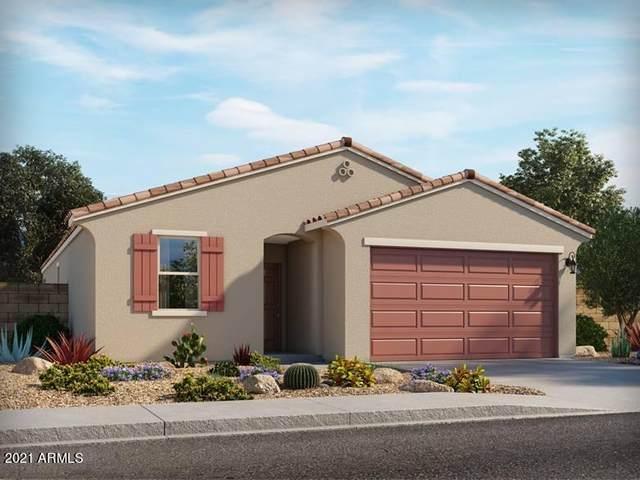 4506 E Italian Trotter Road, San Tan Valley, AZ 85140 (MLS #6294935) :: Yost Realty Group at RE/MAX Casa Grande