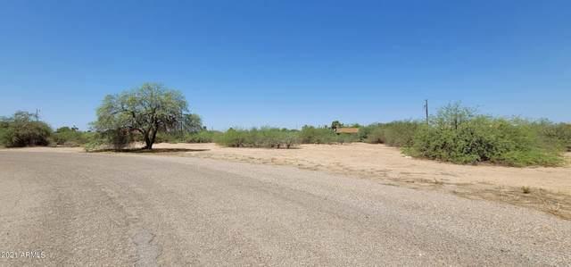 4070 N Palm Circle, Eloy, AZ 85131 (MLS #6294978) :: Yost Realty Group at RE/MAX Casa Grande