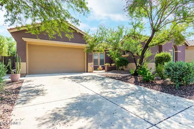 39813 N Belfair Way, Anthem, AZ 85086 (MLS #6294995) :: Selling AZ Homes Team