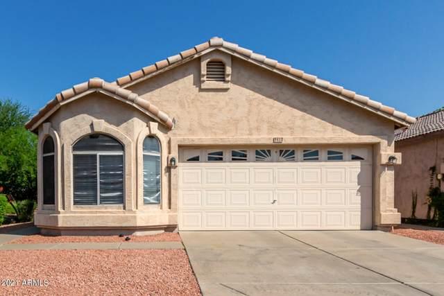 612 W Mcrae Drive, Phoenix, AZ 85027 (MLS #6294999) :: Howe Realty