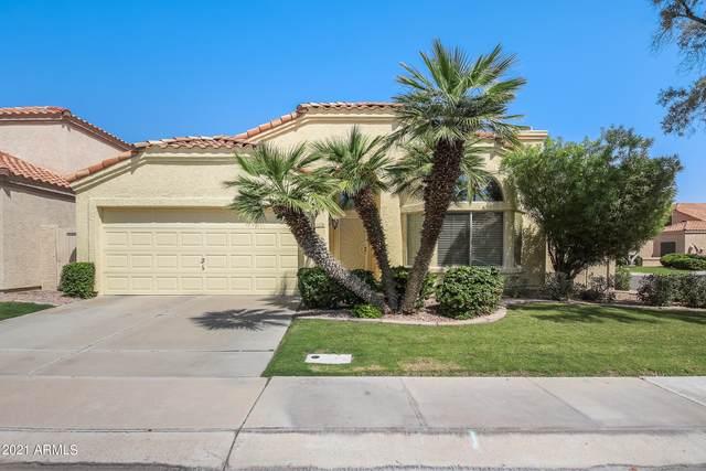 338 E Page Avenue, Gilbert, AZ 85234 (MLS #6295010) :: My Home Group