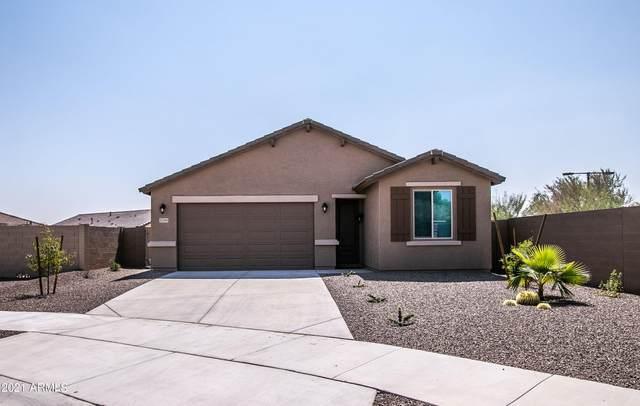 17299 W Molly Lane, Surprise, AZ 85387 (MLS #6295054) :: Maison DeBlanc Real Estate