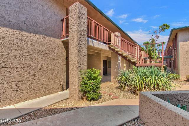 4354 N 82ND Street #255, Scottsdale, AZ 85251 (MLS #6295063) :: The AZ Performance PLUS+ Team